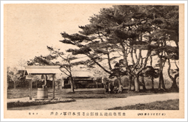 (11)昭和初期の五稜郭内の写真(絵葉書より)