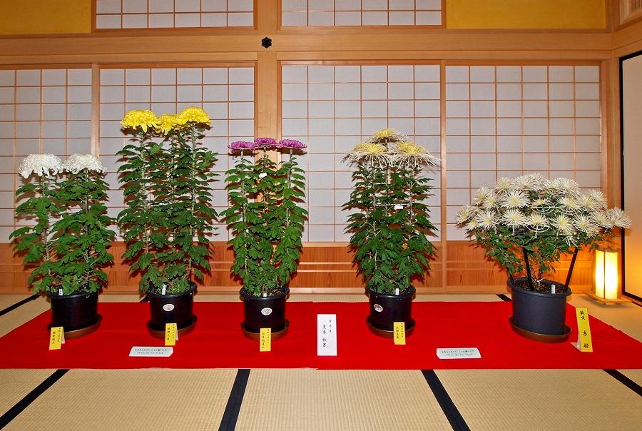 https://www.hakodate-bugyosho.jp/photo-asset/images/111101_3.jpg