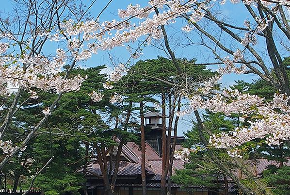 https://www.hakodate-bugyosho.jp/photo-asset/images/140330_1.jpg